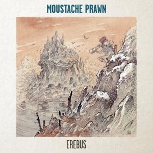 Moustache Prawn - Erebus